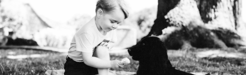 Official Portraits – Prince George's 3rd Birthday
